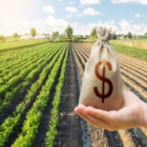 crop revenue